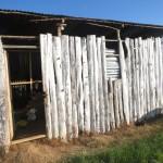 orthodox-church-in-kenya-dsc00224